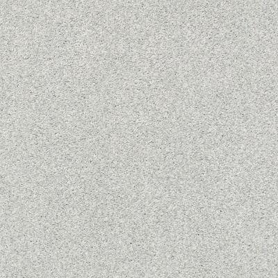 Shaw Floors SFA Fyc Tt II Net Bay Waves (t) 522T_5E022