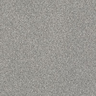 Shaw Floors SFA Fyc Tt II Net Cool Breeze (t) 525T_5E022