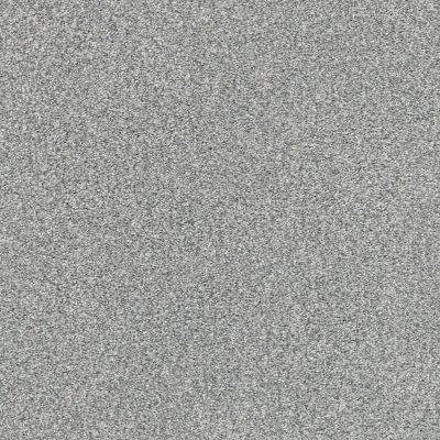 Shaw Floors SFA Fyc Tt II Net Misty Rain (t) 529T_5E022