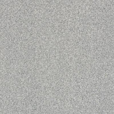 Shaw Floors SFA Fyc Tt II Net Polished Silver (t) 538T_5E022