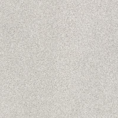 Shaw Floors SFA Fyc Tt II Net Morning Dew (t) 539T_5E022