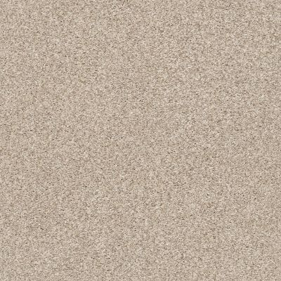 Shaw Floors Value Collections Fyc Tt II Net My Haven (t) 743T_5E022