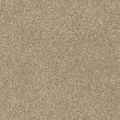 Shaw Floors SFA Fyc Tt II Net Honey Tea (t) 750T_5E022