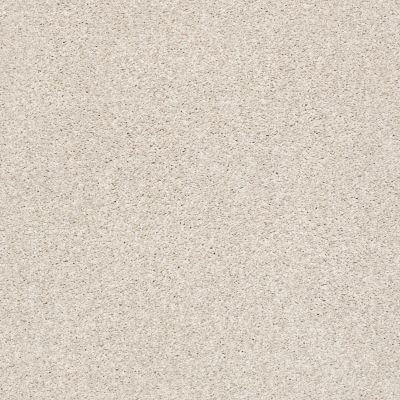 Shaw Floors SFA Fyc Tt II Net Subtle Blush (t) 800T_5E022
