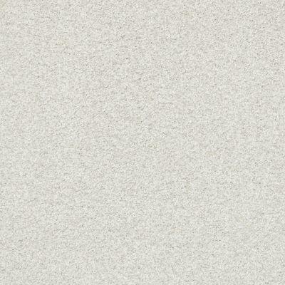 Shaw Floors SFA Fyc Tt Blue Net Warm Blanket (t) 114T_5E023