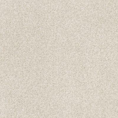 Shaw Floors SFA Fyc Tt Blue Net Vintage Quilt (t) 121T_5E023