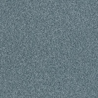 Shaw Floors SFA Fyc Tt Blue Net Tropical Hideaway (t) 431T_5E023