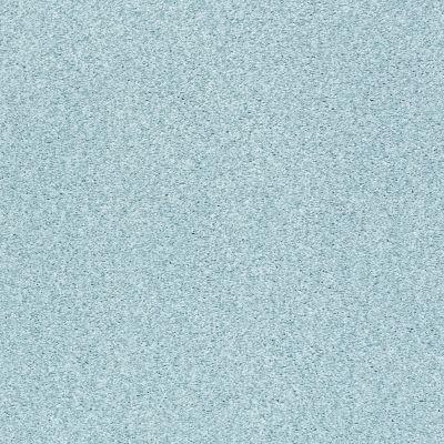 Shaw Floors SFA Fyc Tt Blue Net Winter Sky (t) 437T_5E023