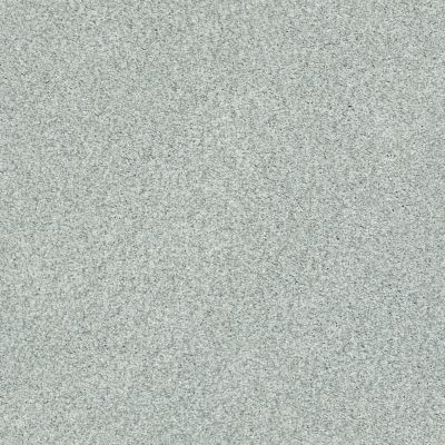 Shaw Floors SFA Fyc Tt Blue Net Refreshed (t) 515T_5E023