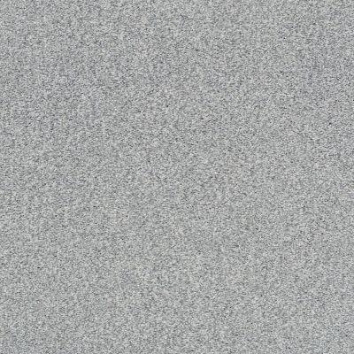 Shaw Floors SFA Fyc Tt Blue Net Whisper (t) 536T_5E023