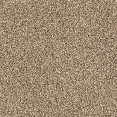 Shaw Floors SFA Fyc Tt Blue Net Falling Leaves (t) 720T_5E023