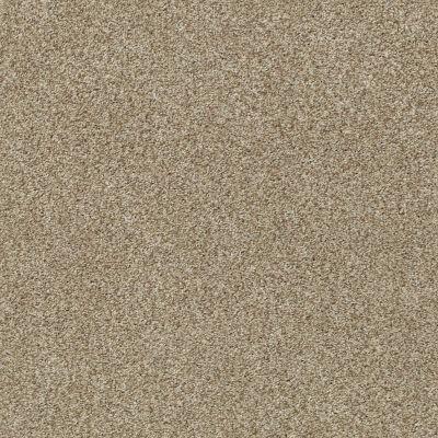 Shaw Floors SFA Fyc Tt Blue Net Honey Tea (t) 750T_5E023
