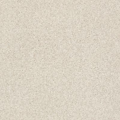 Shaw Floors SFA Fyc Tt Blue Net Subtle Blush (t) 800T_5E023