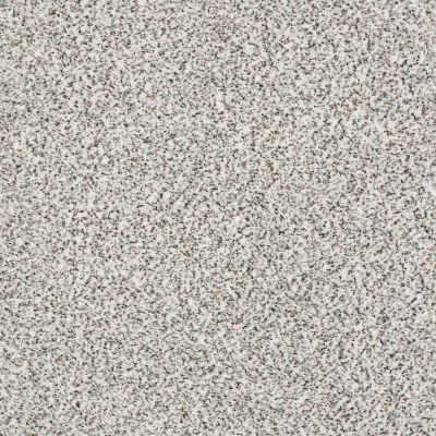 Shaw Floors SFA Fyc Ta I Dk Nat Net True Reality (a) 167A_5E024