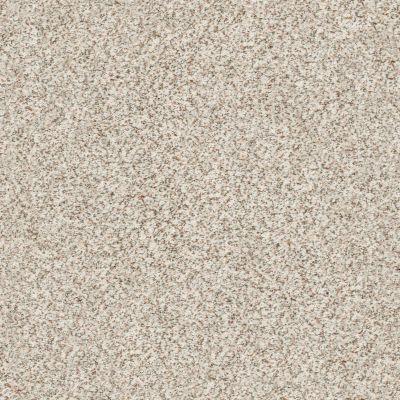 Shaw Floors SFA Fyc Ta I Dk Nat Net New Perspective (a) 193A_5E024