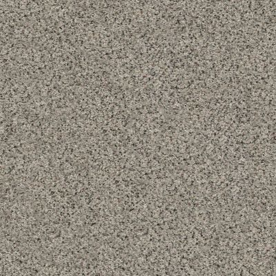 Shaw Floors Value Collections Fyc Ta I Dk Nat Net Lasting Moment (a) 560A_5E024