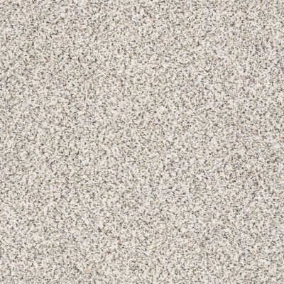 Shaw Floors SFA Fyc Ta II Dk Nat Net Front Row Seat (a) 183A_5E025