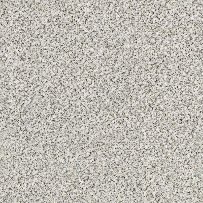 Shaw Floors SFA Fyc Ta II Dk Nat Net I'm Freezing (a) 187A_5E025