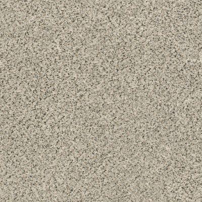 Shaw Floors SFA Fyc Ta II Dk Nat Net Online Date (a) 188A_5E025