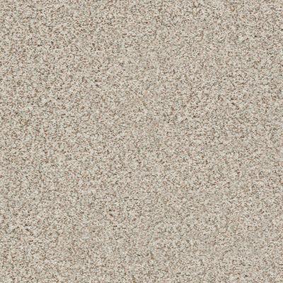 Shaw Floors SFA Fyc Ta II Dk Nat Net Stage Lights (a) 190A_5E025