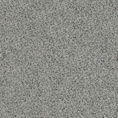 Shaw Floors Value Collections Fyc Ta II Dk Nat Net Lasting Moment (a) 560A_5E025