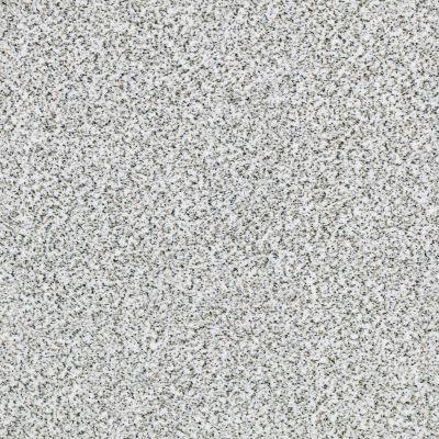 Shaw Floors SFA Fyc Ta Blue Dk Nat Net I'm Freezing (a) 187A_5E026
