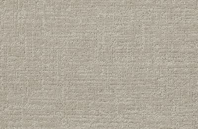 Shaw Floors Value Collections Creating Memories Net Shoreline Haze 128P_5E027