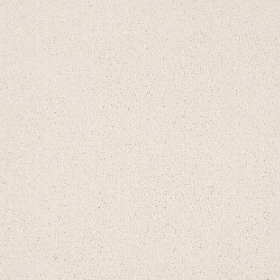 Shaw Floors Value Collections Warm Memories Net Clean Linen 122P_5E029