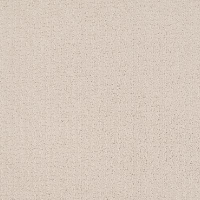 Shaw Floors Value Collections Warm Memories Net Subtle Blush 800P_5E029