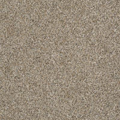 Shaw Floors Bellera Charmed Hues Tan 00101_5E039