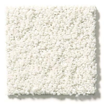 Shaw Floors Aerial View Cotton 00100_5E041