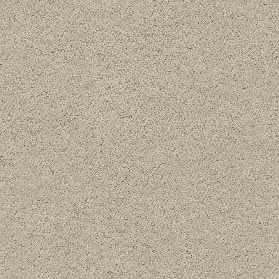 Shaw Floors Aerial View Tiramisu 00104_5E041