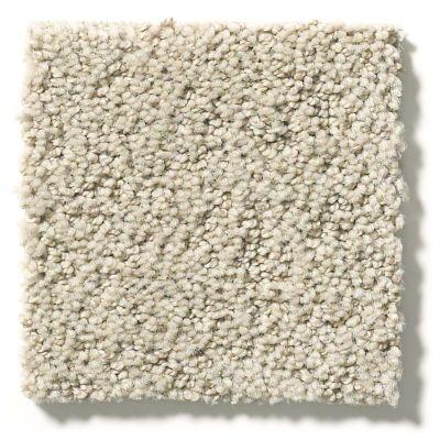 Shaw Floors Foundations Aerial View Tiramisu 00104_5E041