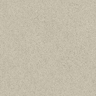 Shaw Floors Foundations Aerial View Spun Wool 00105_5E041