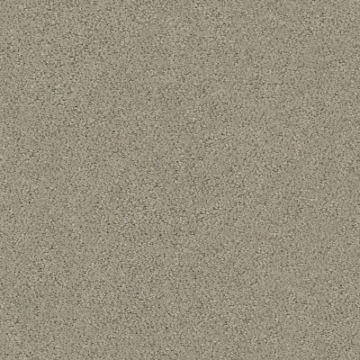 Shaw Floors Foundations Aerial View Artisan Taupe 00700_5E041