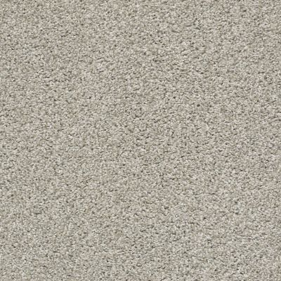 Shaw Floors Poised Winter Birch 00510_5E042