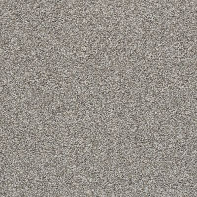 Shaw Floors Poised Flannel Gray 00713_5E042