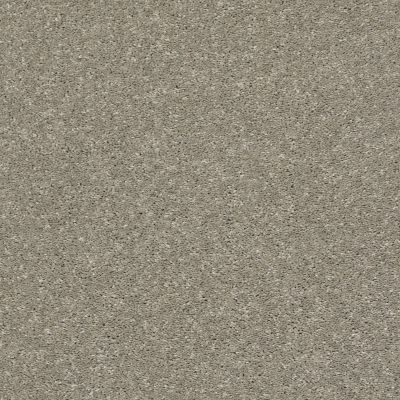Shaw Floors Simply The Best After All II Rustic Taupe 00722_5E045