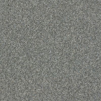 Shaw Floors Cabana Bay Tonal Net Shadow 00541_5E046