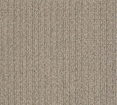 Shaw Floors Foundations Aerial Arts Net Artisan Taupe 00700_5E049