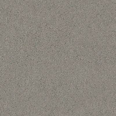 Shaw Floors Aerial View Net Dark Slate 00503_5E050