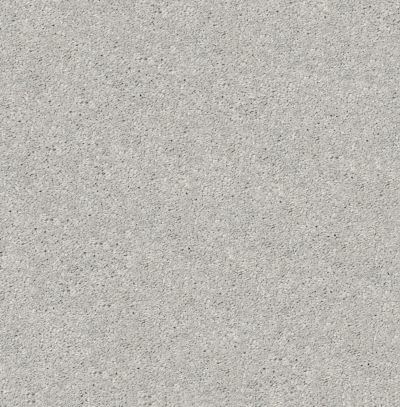 Shaw Floors After All I Net Shadow 00522_5E053