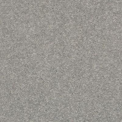 Shaw Floors After All II Net Moon Gaze 00523_5E054