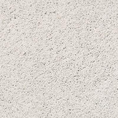 Shaw Floors Caress By Shaw Rich Opulence Net Glacier Ice 00500_5E063