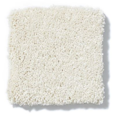 Shaw Floors Value Collections Take The Floor Texture II Net Final Straw 00114_5E067