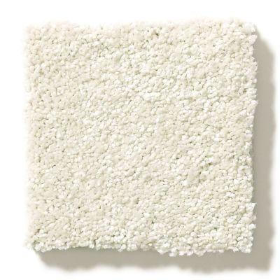 Shaw Floors Value Collections Take The Floor Texture II Net Modern Loft 00154_5E067
