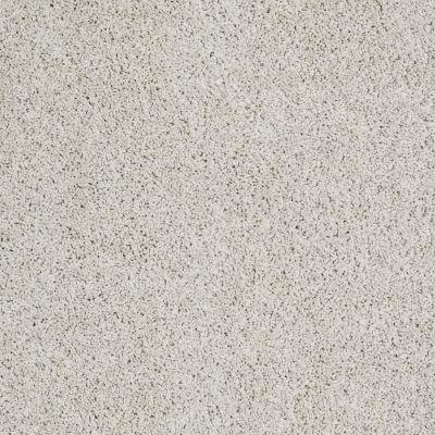 Shaw Floors Foundations Take The Floor Twist I Net Alpaca 00140_5E069