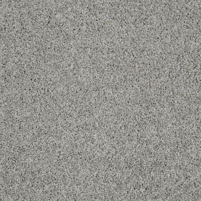 Shaw Floors Value Collections Take The Floor Twist I Net Flint 00544_5E069