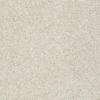 Shaw Floors Foundations Take The Floor Twist II Net Alpaca 00140_5E070