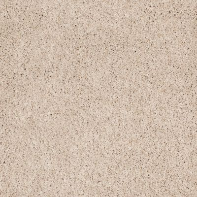 Shaw Floors Foundations Take The Floor Twist Blue Patience 00133_5E071